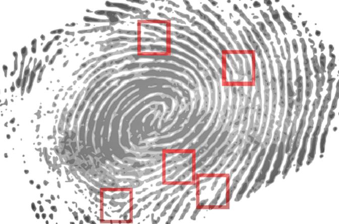 escáner huella dactilar
